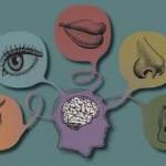 mind senses